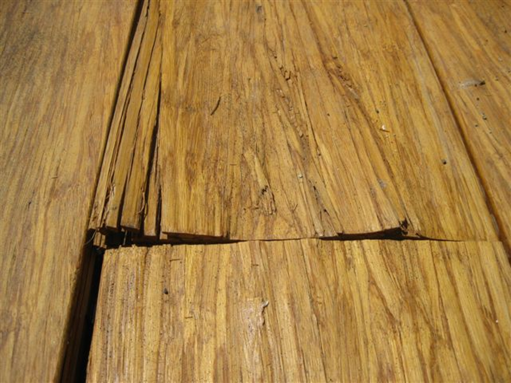 Ripoff report cali bamboo complaint review san diego for Bamboo flooring outdoor decking