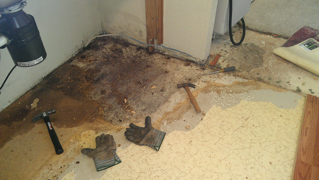 Black Mold In Kitchen Ripoff Report Lowes Complaint Review Wilkesboro North Carolina