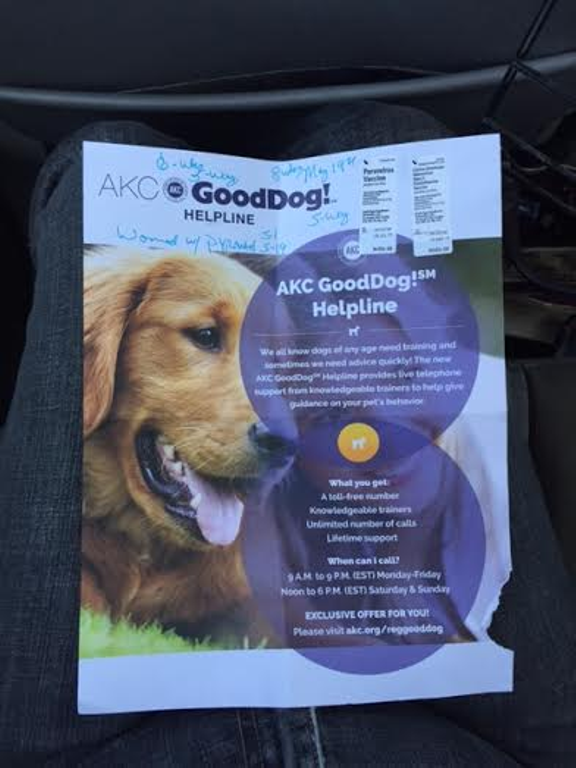 Is Akc Good Dog Helpline Review